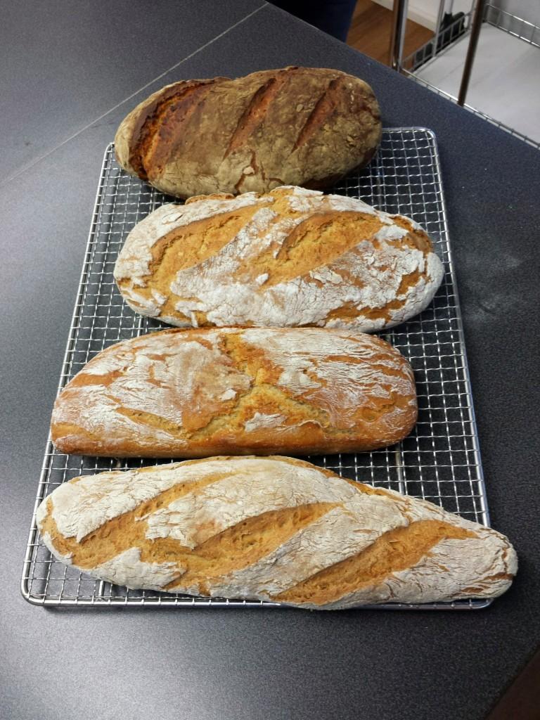 Meine ersten richtigen Brote, Dank Werners geduldiger Anleitung.