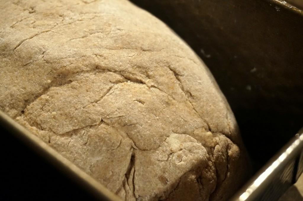 Geknetet und in der Form: Das Brot wartet auf den heißen Ofen.