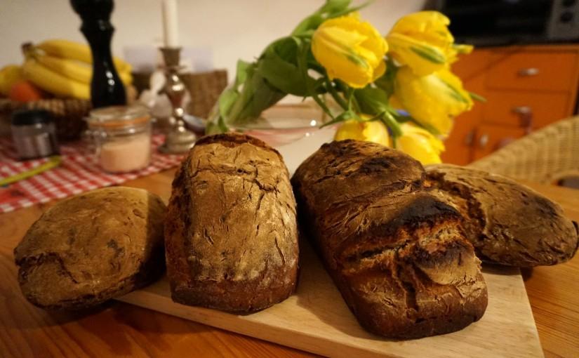 Brot und Tulpen, Schwarz und Gelb