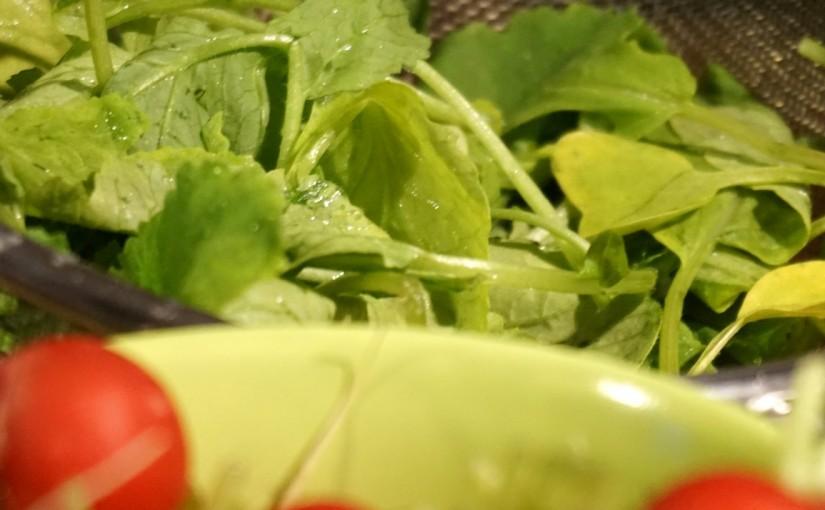 Radieschenblätter als leckeres Pesto